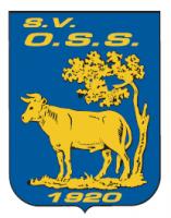 OSS'20