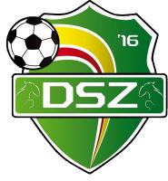 logo van DSZ '16 1